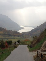 Herbstblick ins Donautal bei Spitz