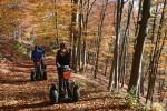 Durch die Buchenwälder in der Wachau